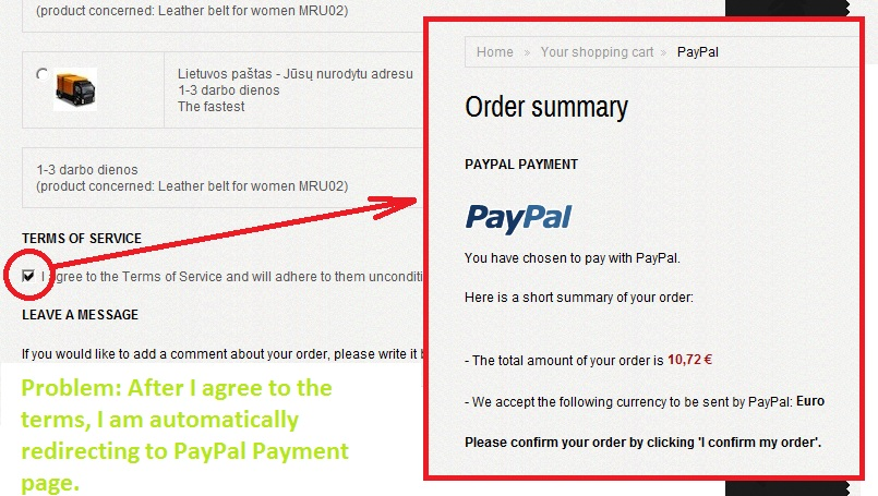 Automatically redirecting to PayPal payment - PayPal