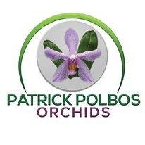 Patrick POLBOS