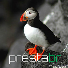 Daniel - PrestaBR