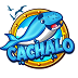 cachalo.com