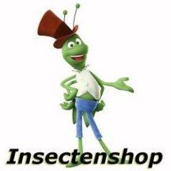 admin@insecten.shop