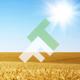 FieldThemes