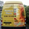 Missing Postcode field on iPad - last post by paddockplants