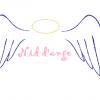 nid d'ange