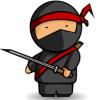 Ninja Of Web