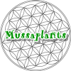 mussaplants