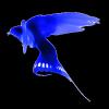 Blue-Garou